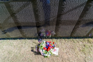 50th Vietnam War Vet Commemortion Ceremony, 18 Nov 2017 (6 of 277)
