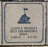 Bradley, Lloyd E. - VVA 457 Memorial Area C (15 of 309) (2)